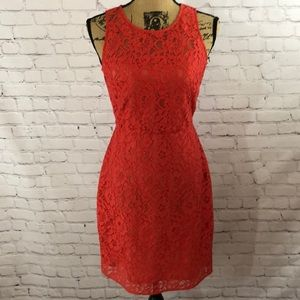 J.crew lace dress - NWT
